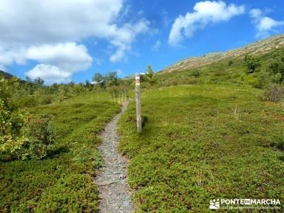 Ocejón - Sierra de Ayllón; la silla de felipe ii viajes puente de mayo paseos por madrid viajes pu